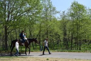 乗馬体験_01