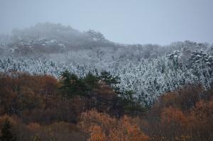 1114迫る積雪