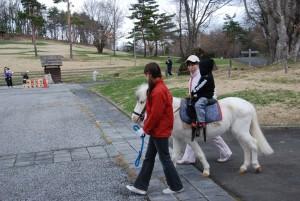 2011、4,29ポニー乗馬