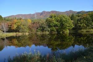 大平沼周辺の紅葉