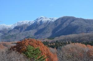 野草の丘から見た竜山
